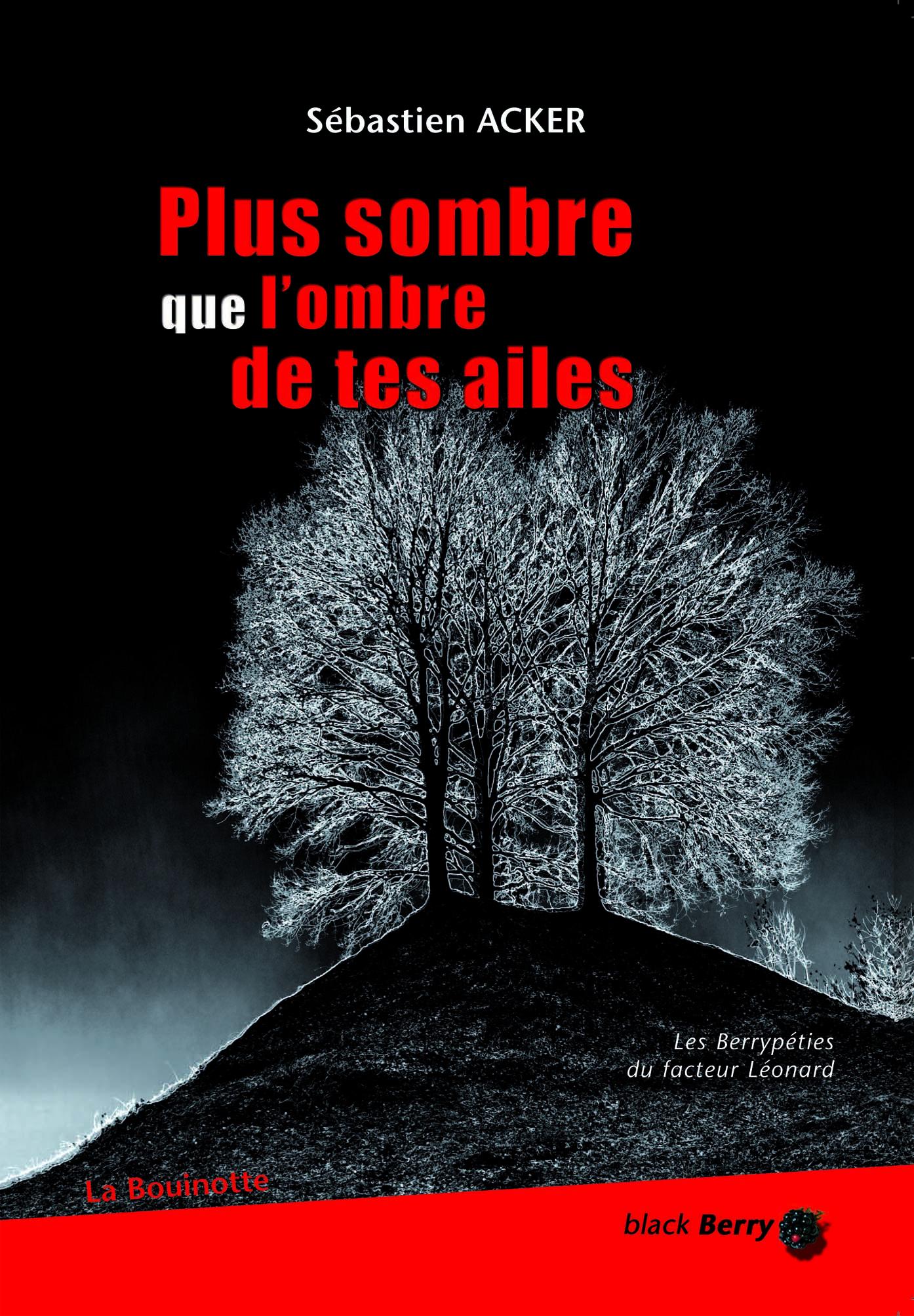 Plus sombre que l'ombre de tes ailes, Sébastien Acker (couverture)